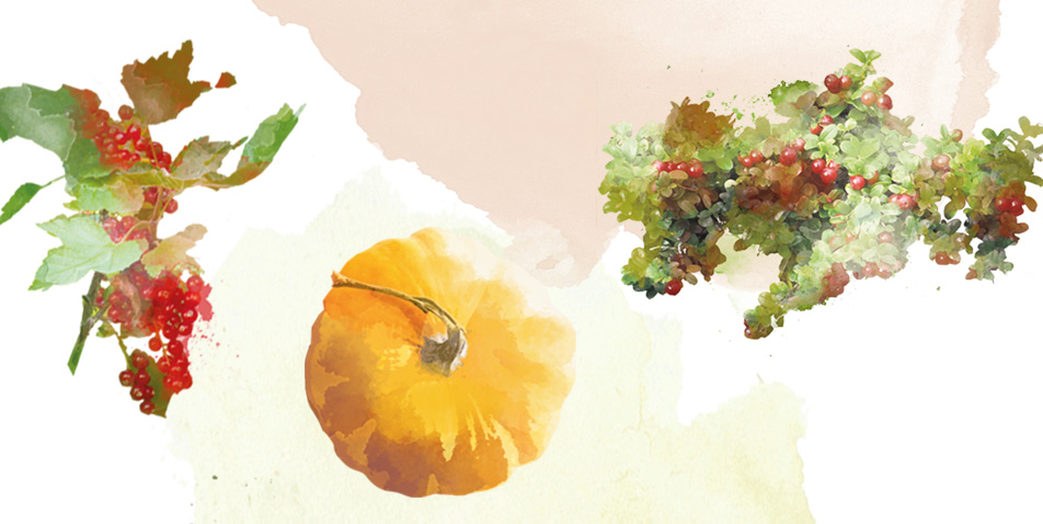 ekologiczne-warzywa-i-owoce-3